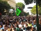 Cirio 2011_12