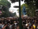 Cirio 2011_22