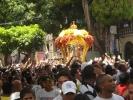 Cirio 2011_28