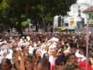 Cirio 2011_4